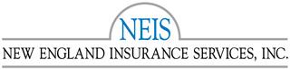 NEIS color logo